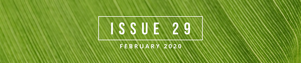 Issue 29 Banner.png