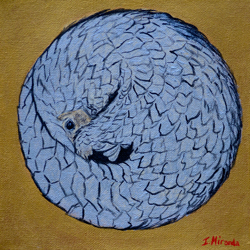 Save the Pangolin 2020 by Ignacio Miranda