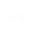 AVM_COR_CMYK_POSITIVO_Logo AVM.png