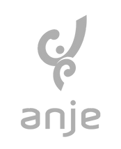 Logo_ANJE_PB_1500x1850px_300dpi-1_edited