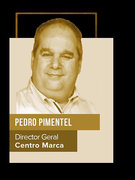 Site_PrémioADA_Oradores_Pedro_Pimentel.p