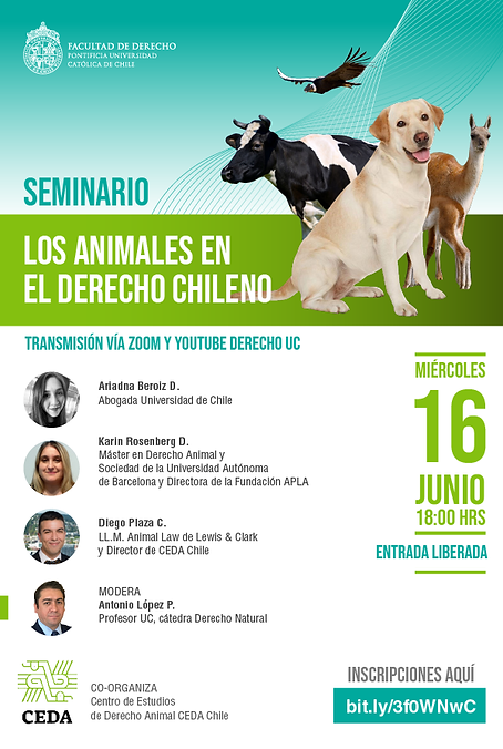 seminario los animales en el derecho chi