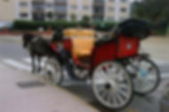 Paseo_1027300977.jpg