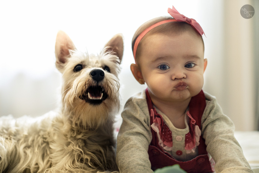 freso pet_criança com pet