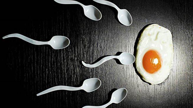 Fertilidade prever beneficios