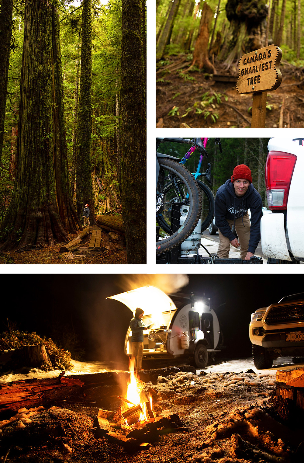 Mountain Biking Photography By Nick Uthe