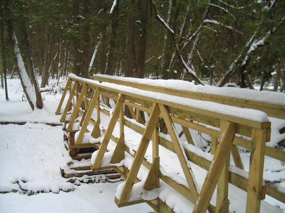 Footbridge in Hockley Valley