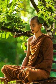 Serene Monk Meditating Under A Tree