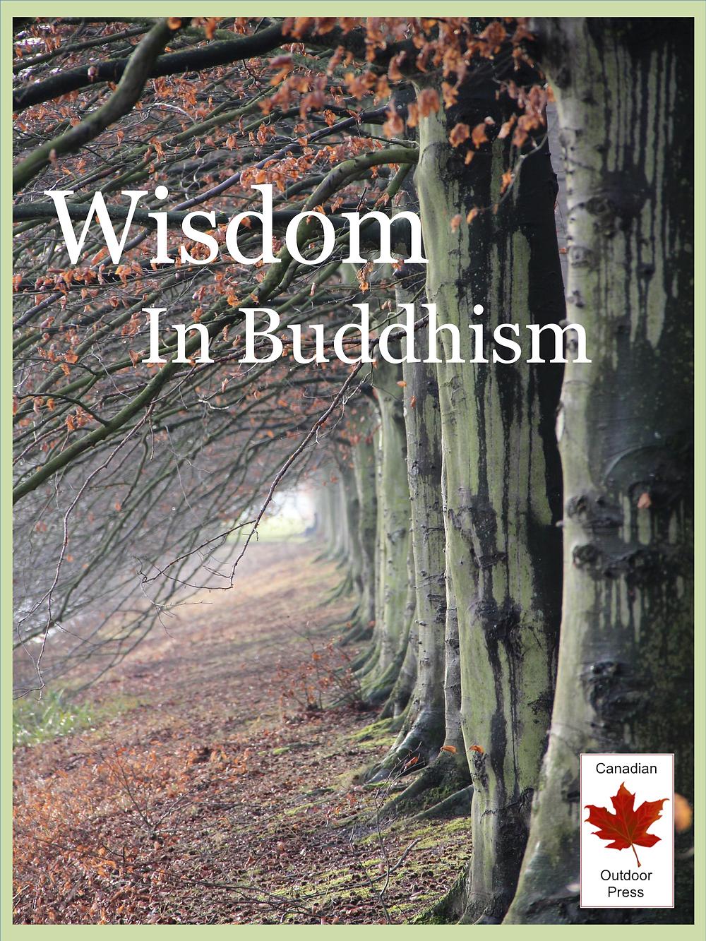 Book Cover - Wisdom in Buddhism
