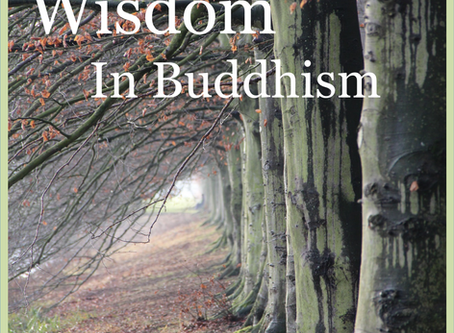 Introduction to Wisdom in Buddhism