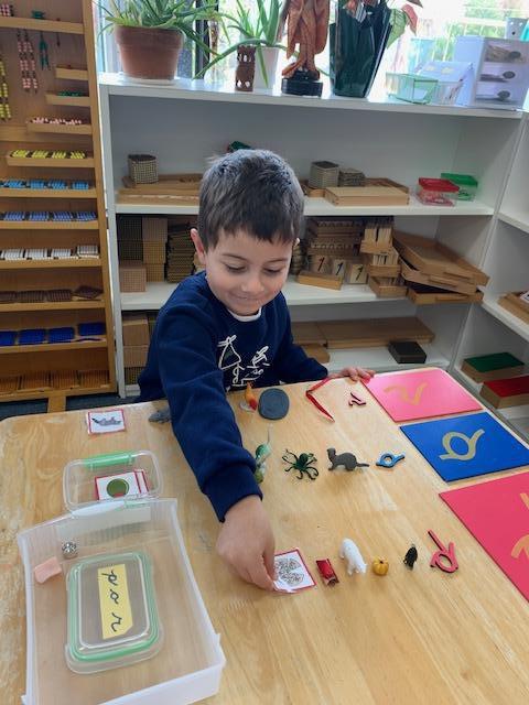 Montessori Environments