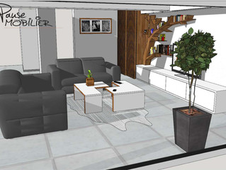 Living de Salon et Bibliothèque Design