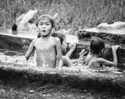 Java kids