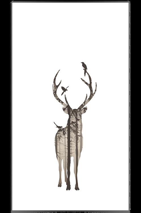 Hjort 1