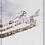 Thumbnail: Astrid - Ski (natur) 50x70