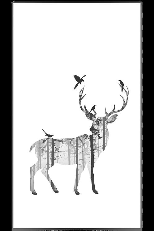 Hjort 2