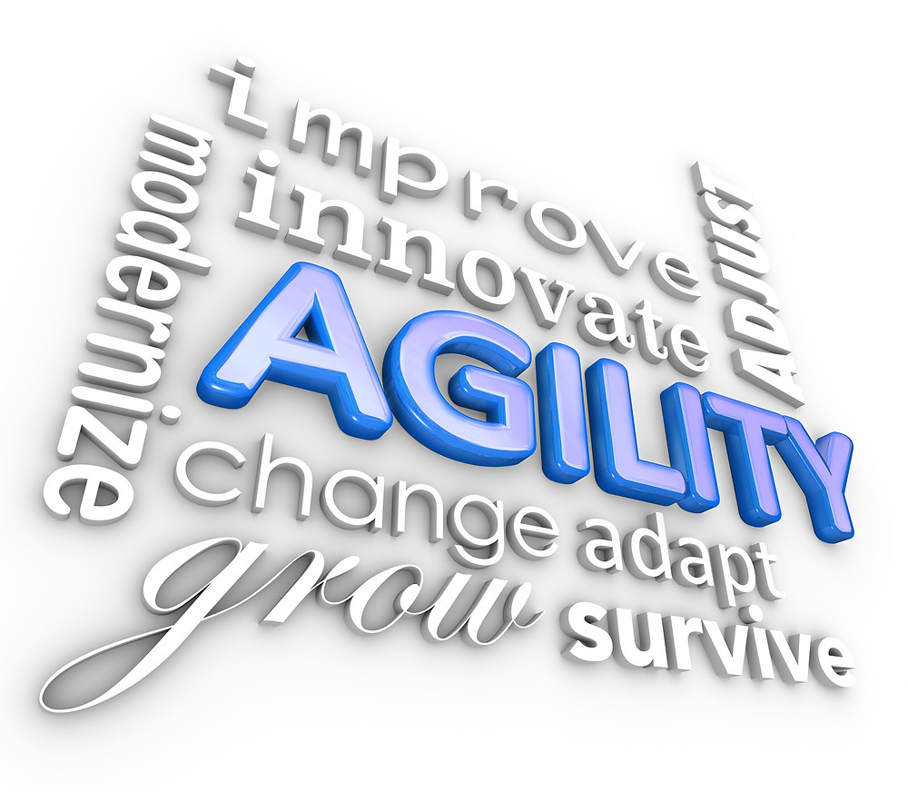 An Agile Approach to Process Management | The AGLX Blog