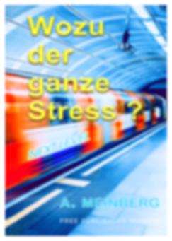WOZU DER GANZE STRESS.png