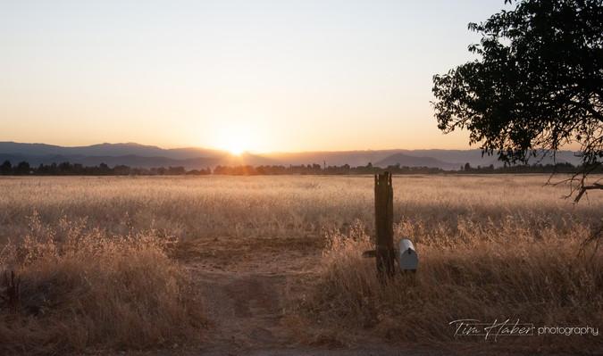 Sunrise in Clovis