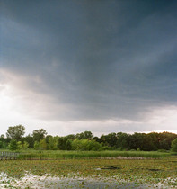 Rain cloud coming over the marsh