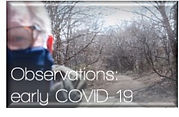 Button%2520-%2520Observations%2520COVID_