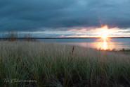 Sunrise beyond the grass