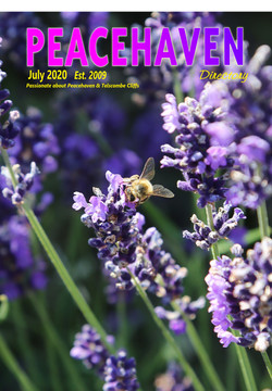Front cover 1