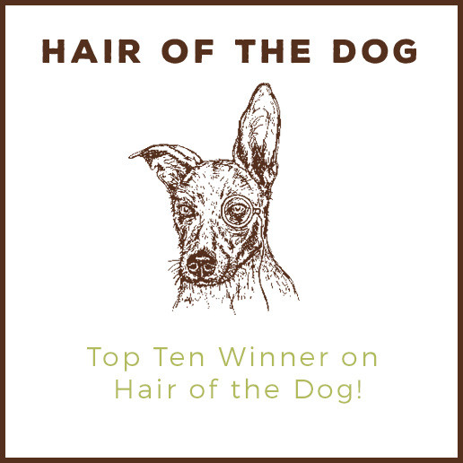 hair of the dog blog top 10
