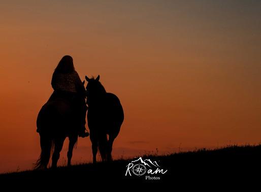 Home Grown Ponies