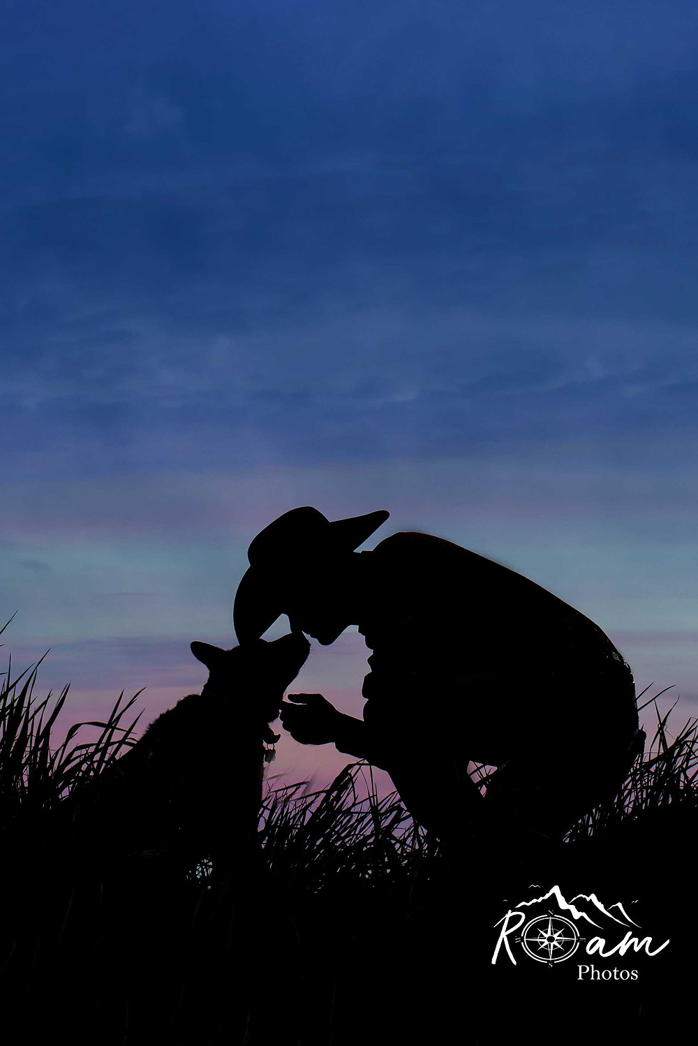 Cowboy and dog silouette