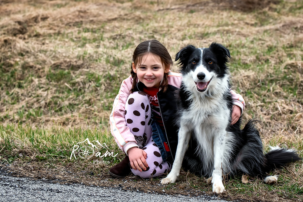 border collie dog sitting with cute little girl