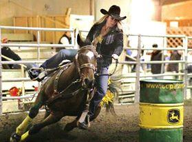 Horse Barrel Racing Equine Horse Sports