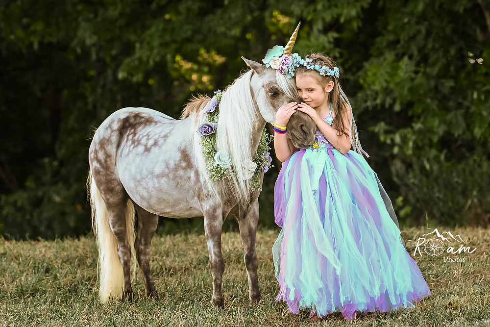 Little girl in princess dress with a unicorn