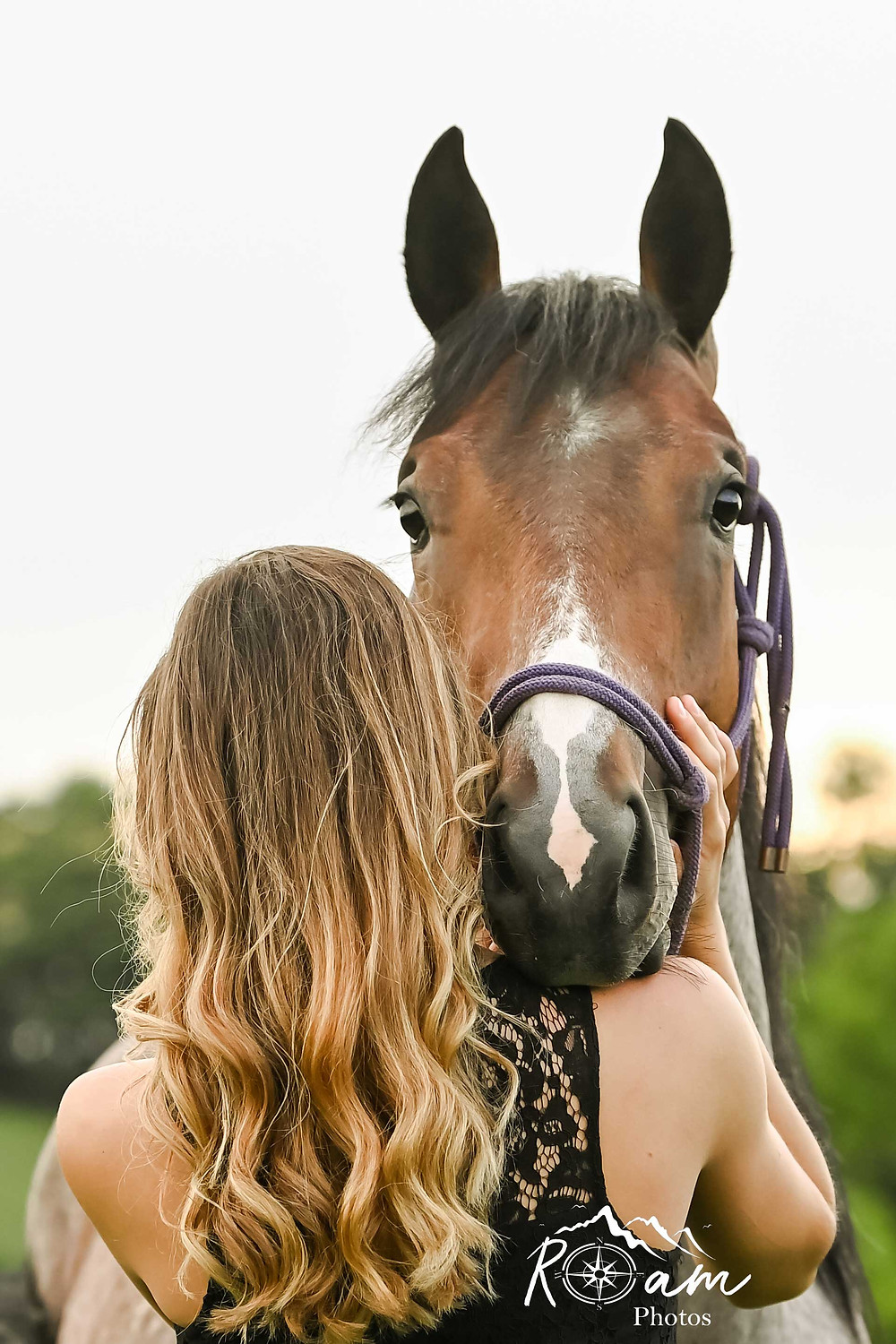 Horse looking over owners shoulder