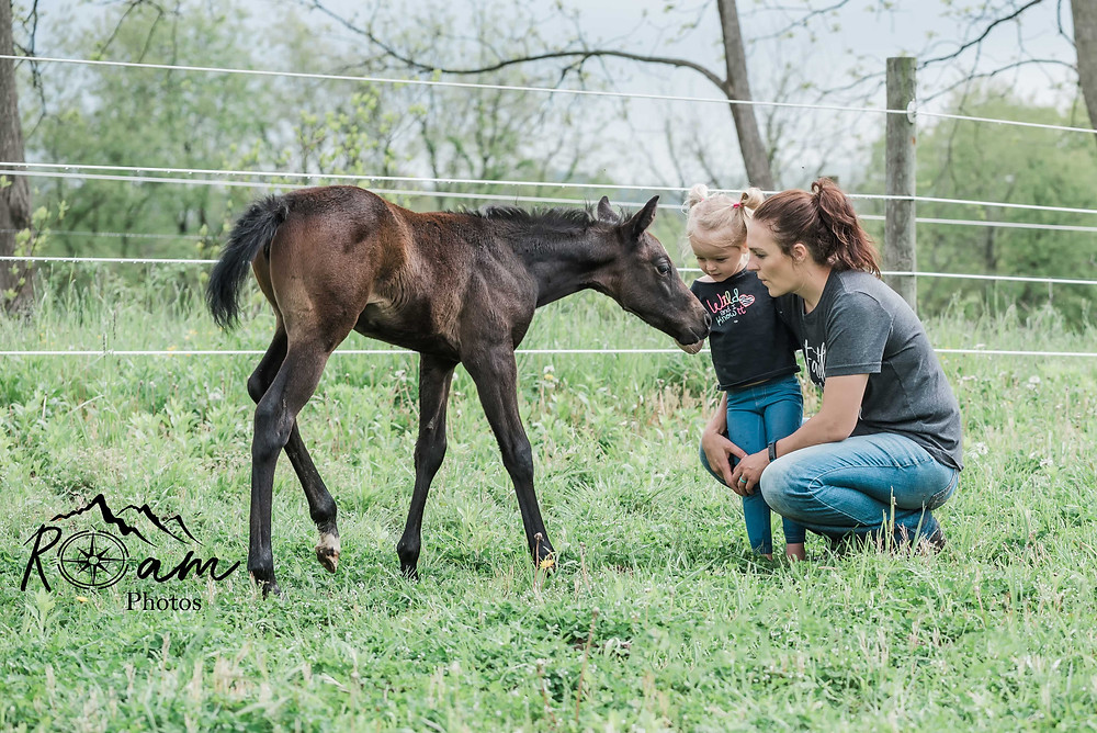 Foal visiting with owners.