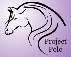projectpolo.jpg