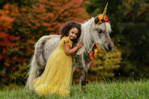 A little girl and her unicorn.