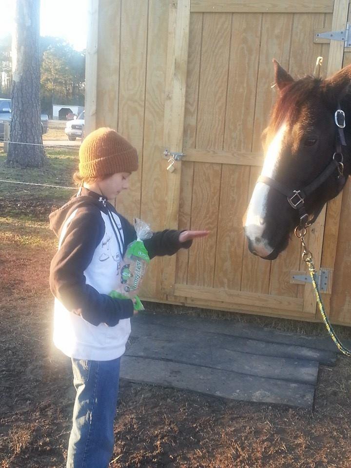 Hunter & Horse