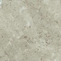 Sand_Lightning_Fossil.jpg