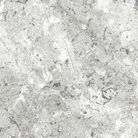 White_Lightning_Fossil.jpg