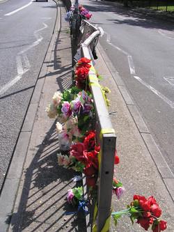 flowers 2012.JPG