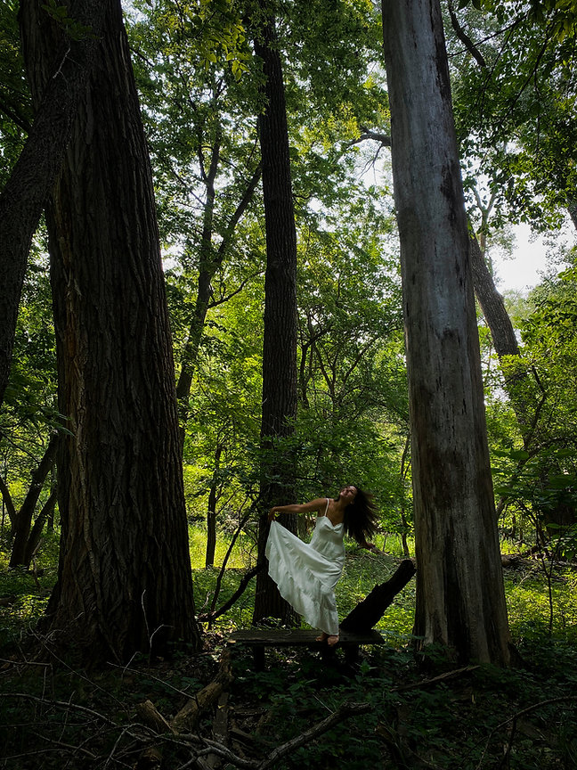 treedancing.jpeg