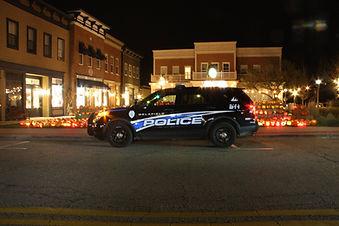 police car delafield.jpg