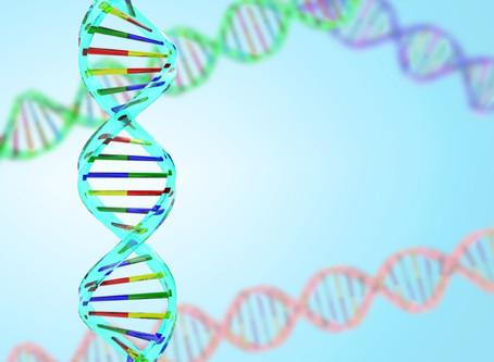 【遺伝子検査を受けました!(ACTN3)】
