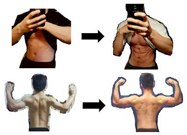 体形比較.png