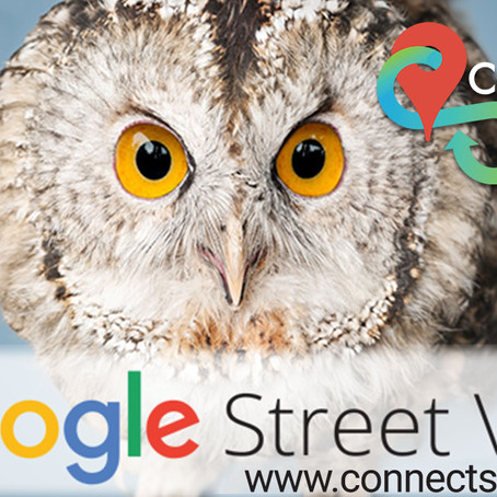 Google Street View - Trusted for Business