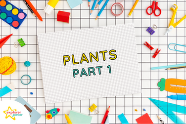 STEAM Activities: Introduction to Plants Part 1