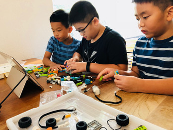 Programming with Microbit