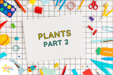 STEAM Activities: Introduction to Plants Part 2