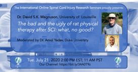 Dr. David S.K. Magnuson - The Bad And The Ugly Of Rat Physical Therapy After SCI: What, No Good?